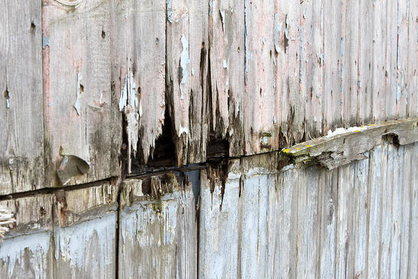 Abstract Art Print featuring the photograph Battered Wooden Wall by Fizzy Image