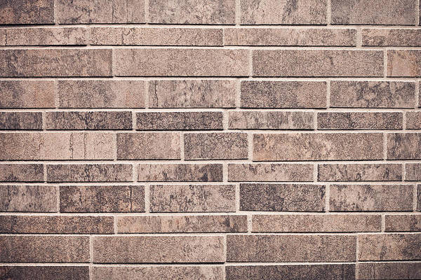 Backdrop Art Print featuring the photograph Brick Wall by Tom Gowanlock