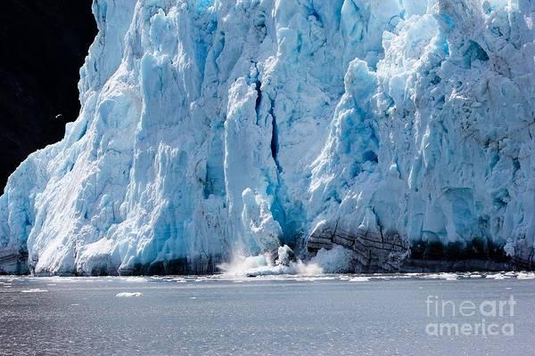 Glacier Art Print featuring the photograph Calving Glacier by Sophie Vigneault