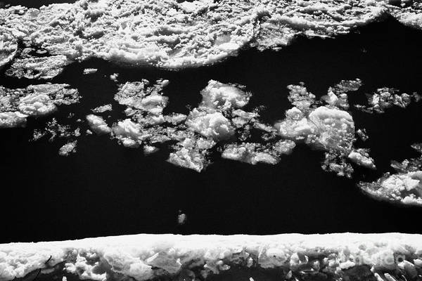 Downtown Art Print featuring the photograph large chunks of floating ice on the south saskatchewan river in winter flowing through downtown Sask by Joe Fox