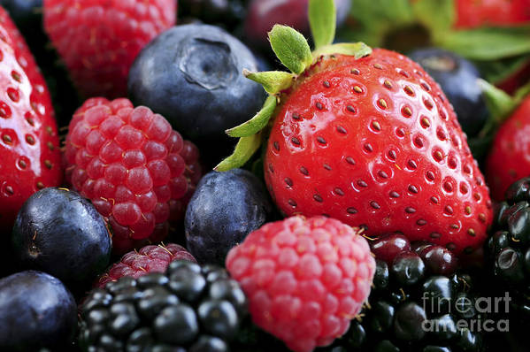Berry Art Print featuring the photograph Assorted Fresh Berries by Elena Elisseeva