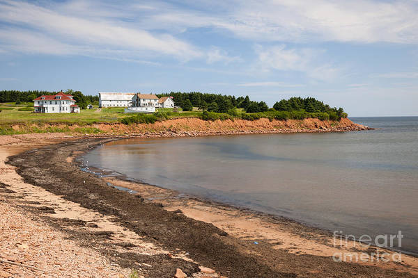 Prince Edward Island Art Print featuring the photograph Prince Edward Island Coastline by Elena Elisseeva