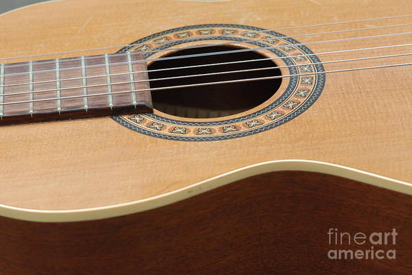 Guitar Art Print featuring the photograph A Music Maker 4 by Paddy Shaffer