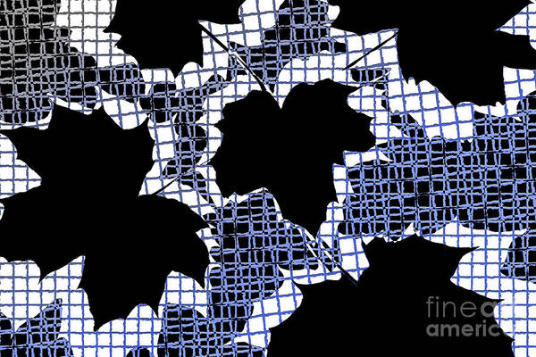 Abstract Print featuring the photograph Abstract Leaf Pattern - Black White Blue by Natalie Kinnear