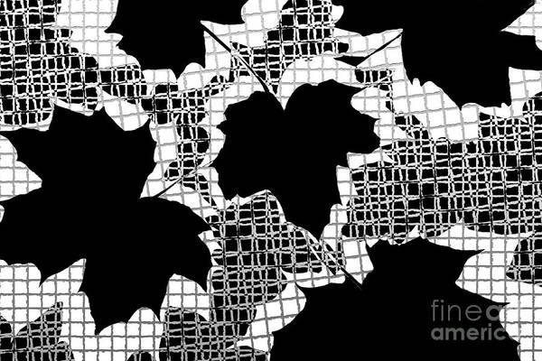 Abstract Art Print featuring the photograph Abstract Leaf Pattern - Black White Grey by Natalie Kinnear