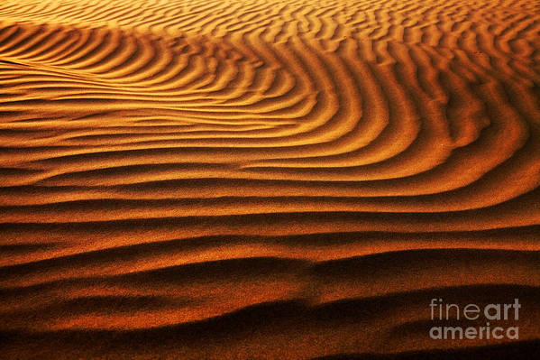 Dune Art Print featuring the photograph Abstract Sand Pattern by Sorin Rechitan