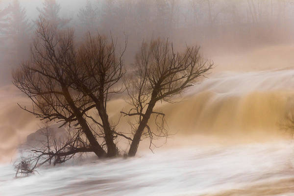 against The Current st. Louis River jay Cooke thomsen Reservoir spring Tree long Exposure spring Melt fog mist nature river mary Amerman Art Print featuring the photograph Against The Current by Mary Amerman