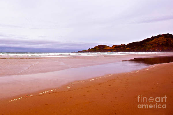 Agate Beach Oregon Art Print featuring the photograph Agate Beach Oregon With Yaquina Head Lighthouse by Artist and Photographer Laura Wrede