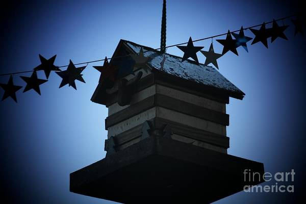 Stars And Stripes Art Print featuring the photograph American Bird House by Brandi Maher