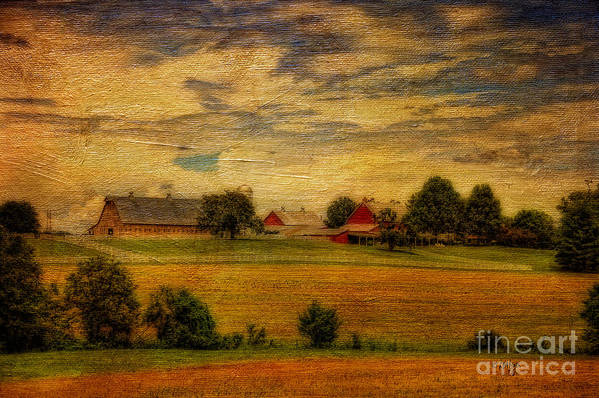 Farm Art Print featuring the photograph And The Livin' Is Easy by Lois Bryan