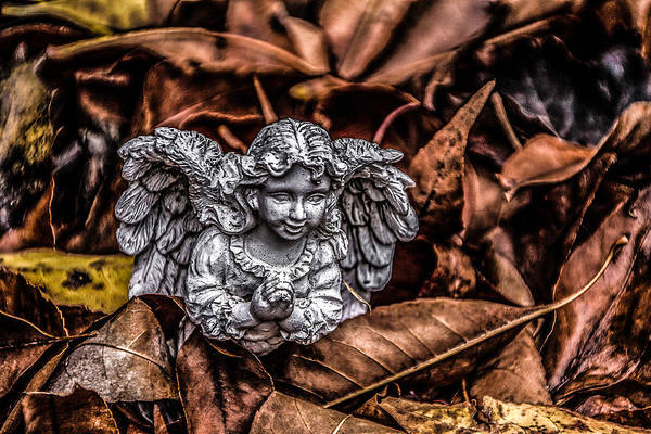 Angel Art Print featuring the photograph Angel Of Fall by Ray Congrove