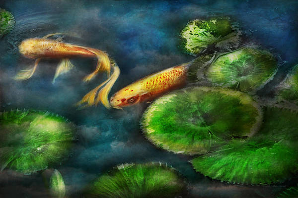 Savad Art Print featuring the photograph Animal - Fish - The Shy Fish by Mike Savad