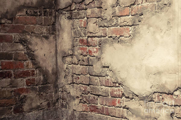 Brick Art Print featuring the photograph Another Brick In The Wall by Bianca Nadeau