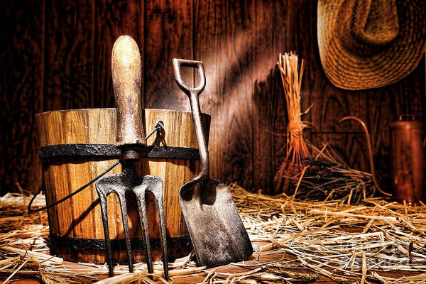 Gardening Art Print featuring the photograph Antique Gardening Tools by Olivier Le Queinec