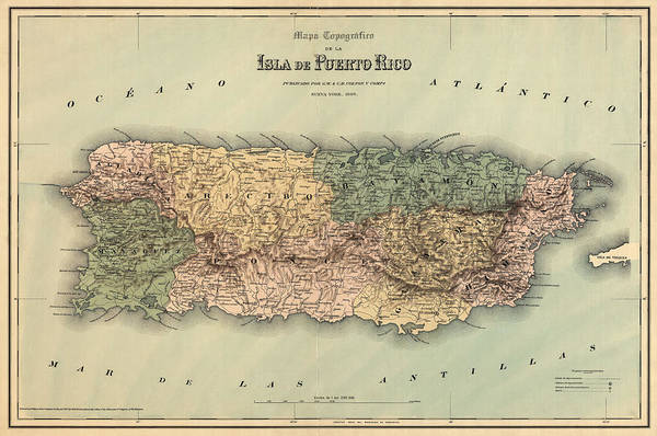 Puerto Rico Art Print featuring the drawing Antique Map Of Puerto Rico - 1886 by Blue Monocle