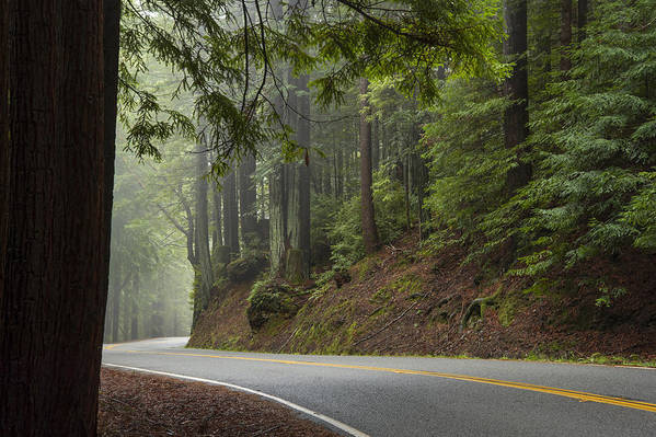 California Art Print featuring the photograph Around The Bend by Dustin LeFevre