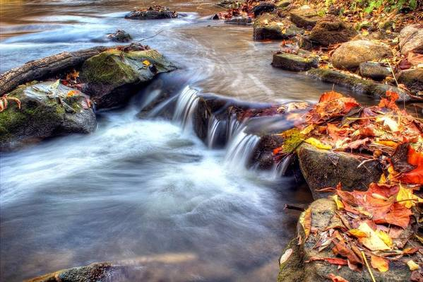 Fall Art Print featuring the photograph Art For Crohn's Hdr Fall Creek by Tim Buisman
