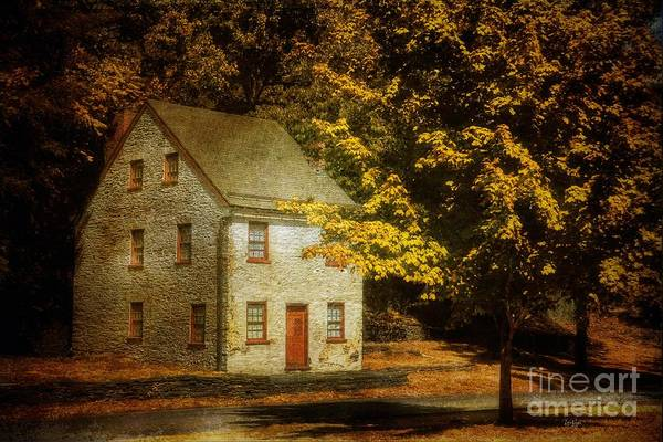 House Art Print featuring the photograph As The World Passes By by Lois Bryan