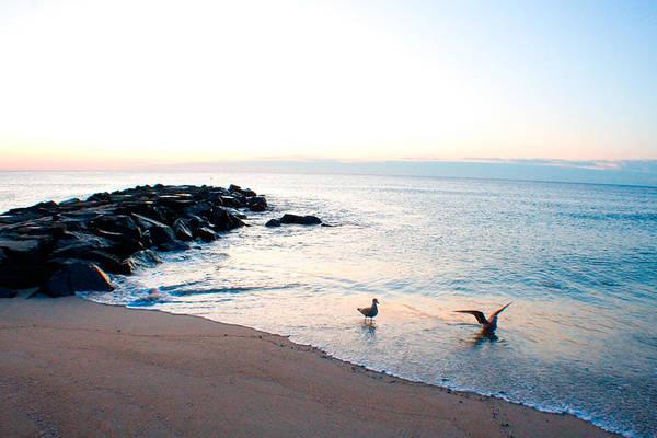 Beach Art Print featuring the photograph Asbury Seagulls by Jon Emery