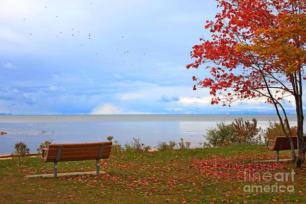 Autumn Photographs Art Print featuring the photograph Autumn by Dipali S