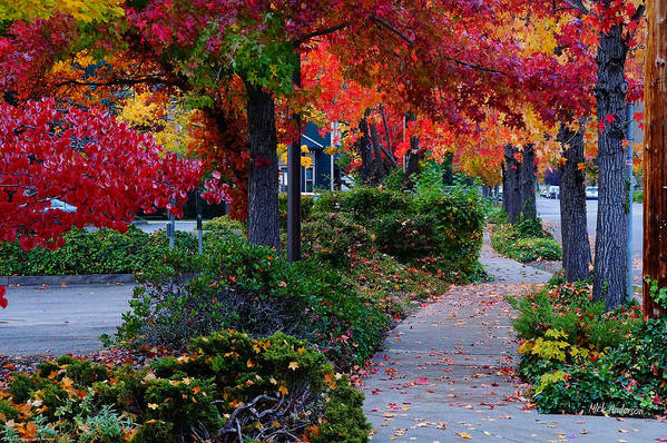 Grants Pass Art Print featuring the photograph Autumn Walk In Grants Pass by Mick Anderson