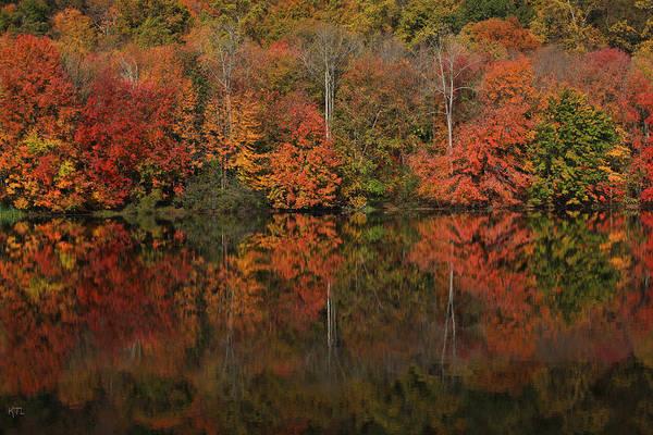 Autumn Art Print featuring the photograph Autumns Design by Karol Livote