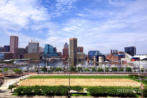 Baltimore Art Print featuring the photograph Baltimore Inner Harbor Beach by Olivier Le Queinec
