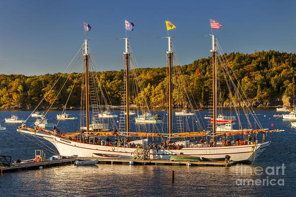 4 Masted Art Print featuring the photograph Bar Harbor Schooner by Brian Jannsen