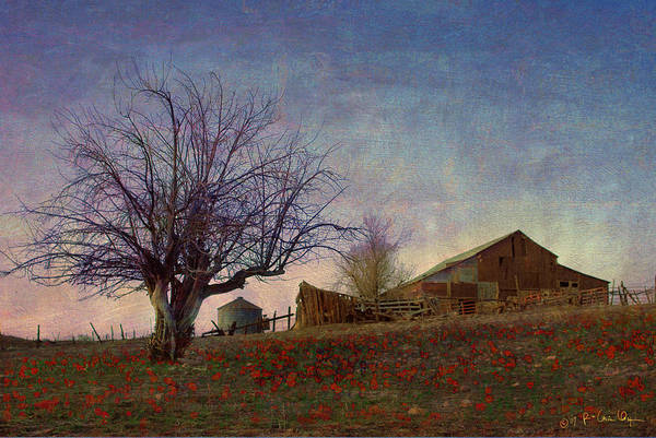 Barn Art Print featuring the painting Barn On The Hill - Big Sky by R christopher Vest