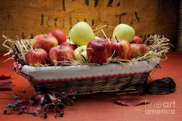 Antioxidant Art Print featuring the photograph Basket Of Apples by Bruno D'Andrea