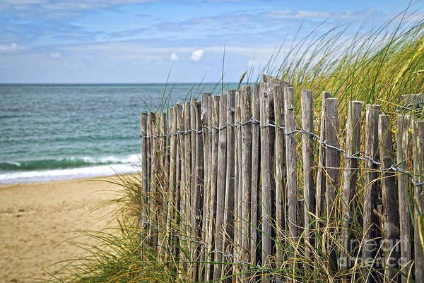 Ocean Art Print featuring the photograph Beach Fence by Elena Elisseeva