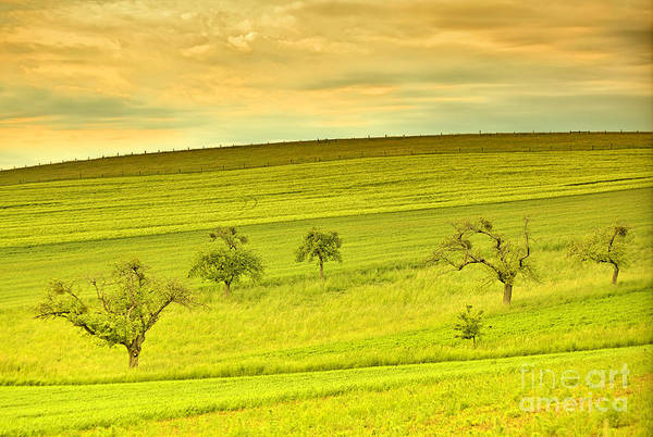 Green Print featuring the photograph Beautiful Landscape In The Spring by Regina Koch