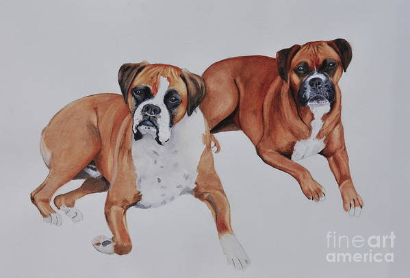Boxers Art Print featuring the painting Best Friends by John W Walker