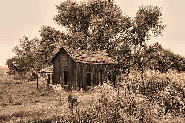 Homestead Art Print featuring the photograph Bishop Homestead by Ray Finch