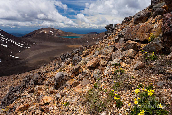 Mount Art Print featuring the photograph Blue Lake Of Tongariro National Park New Zealand by Stephan Pietzko