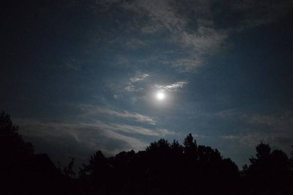 Blue Moon Art Print featuring the photograph Blue Moon by Thomas Phillips