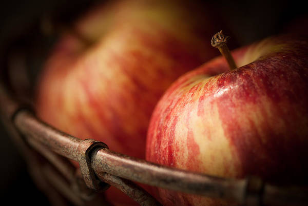 Apple Art Print featuring the photograph Bountiful by Amy Weiss