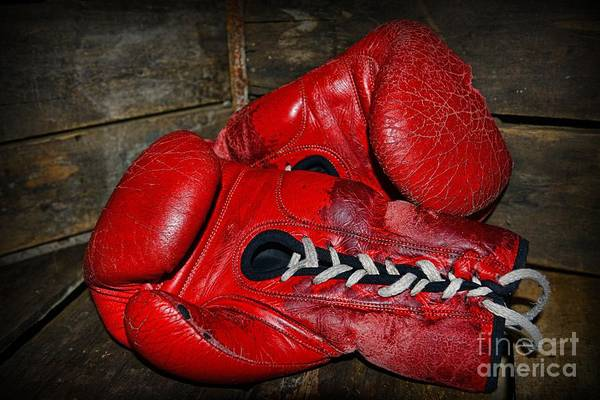 Paul Ward Art Print featuring the photograph Boxing Gloves by Paul Ward