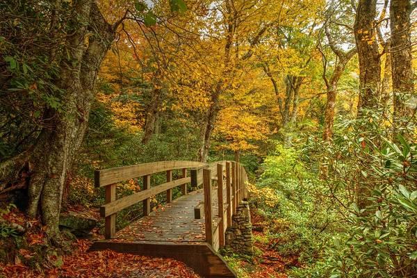 The Blue Ridge Parkway Art Print featuring the photograph Bridge To Eden by Carol Montoya