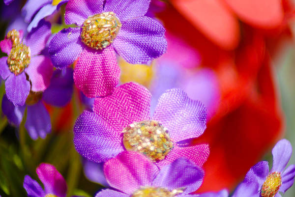 Flowers Art Print featuring the photograph Canvas Flowers by Optical Playground By MP Ray