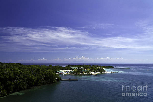 Caribbean Art Print featuring the photograph Caribbean Breeze Five by Ken Frischkorn