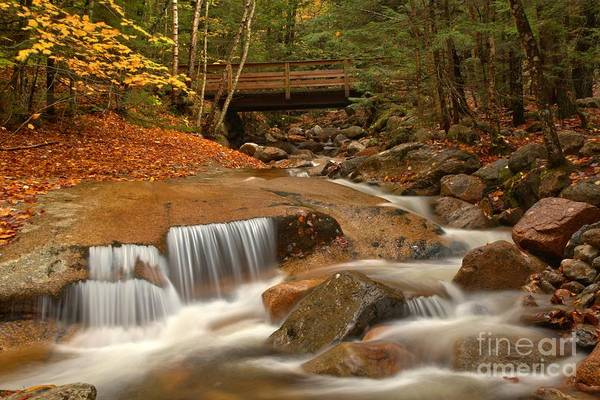 Franconia Notch Art Print featuring the photograph Cascades Below Flume Gorge by Adam Jewell