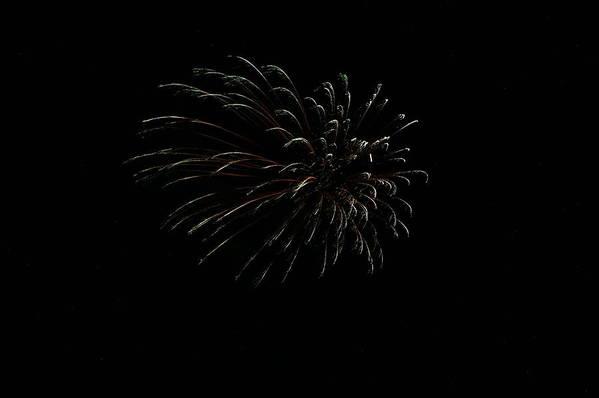 Fireworks Print featuring the photograph Celebration Xxvi by Pablo Rosales