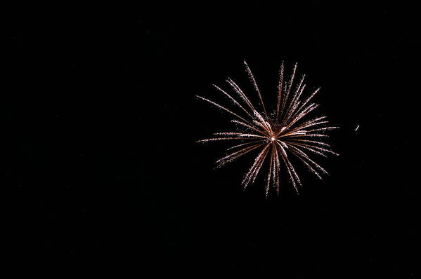 Fireworks Art Print featuring the photograph Celebration Xxxii by Pablo Rosales