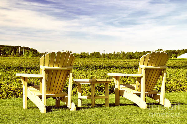 Vineyard Art Print featuring the photograph Chairs Overlooking Vineyard by Elena Elisseeva