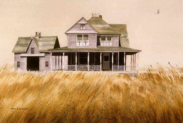 Seagull Art Print featuring the painting Chatham Derelict by Karol Wyckoff