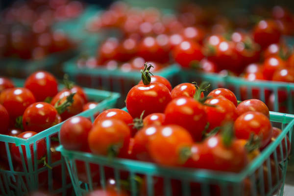 Tomatoes Art Print featuring the photograph Cherry Tomatoes by Caitlyn Grasso