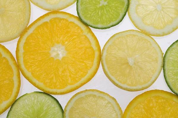 Citrus Print featuring the photograph Citrus Slices by Kelly Redinger