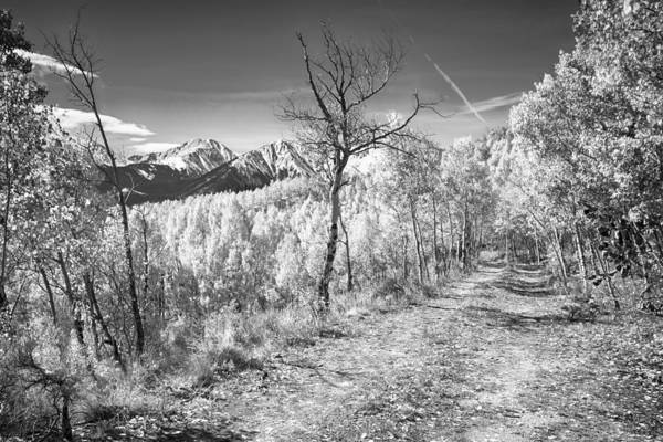 Snow Print featuring the photograph Colorado Backcountry Autumn View Bw by James BO Insogna