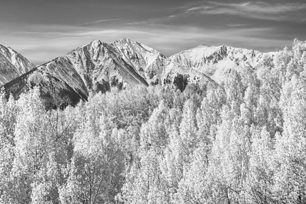 Snow Art Print featuring the photograph Colorado Rocky Mountain Autumn Beauty Bw by James BO Insogna